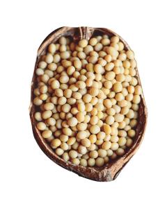 Laura Soybeans 非转基因黄豆